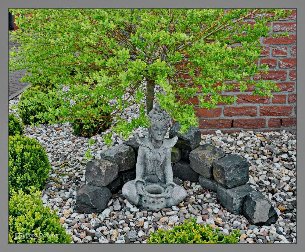 Buddha   (Erwachter)