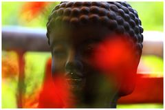 Buddha-Gruß (2)