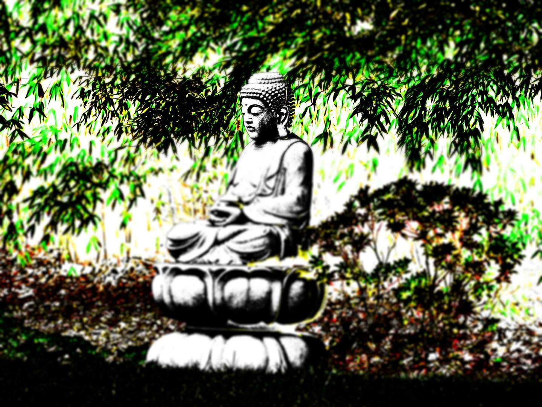 Buddha Im Garten 2 0 Foto Bild Anfangerecke Nachgefragt