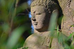 Buddhastature