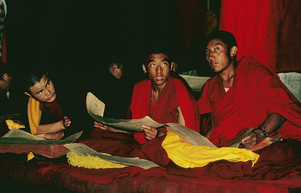 """""""Buddhismus lesen"""""""
