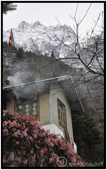 Buddhist Home