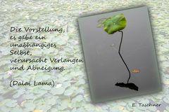 Buddhistische Weisheiten #33