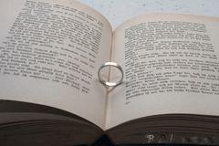 Bücher sind Schiffe