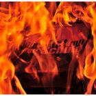 Bücherverbrennung: Der Kult mit der Schuld