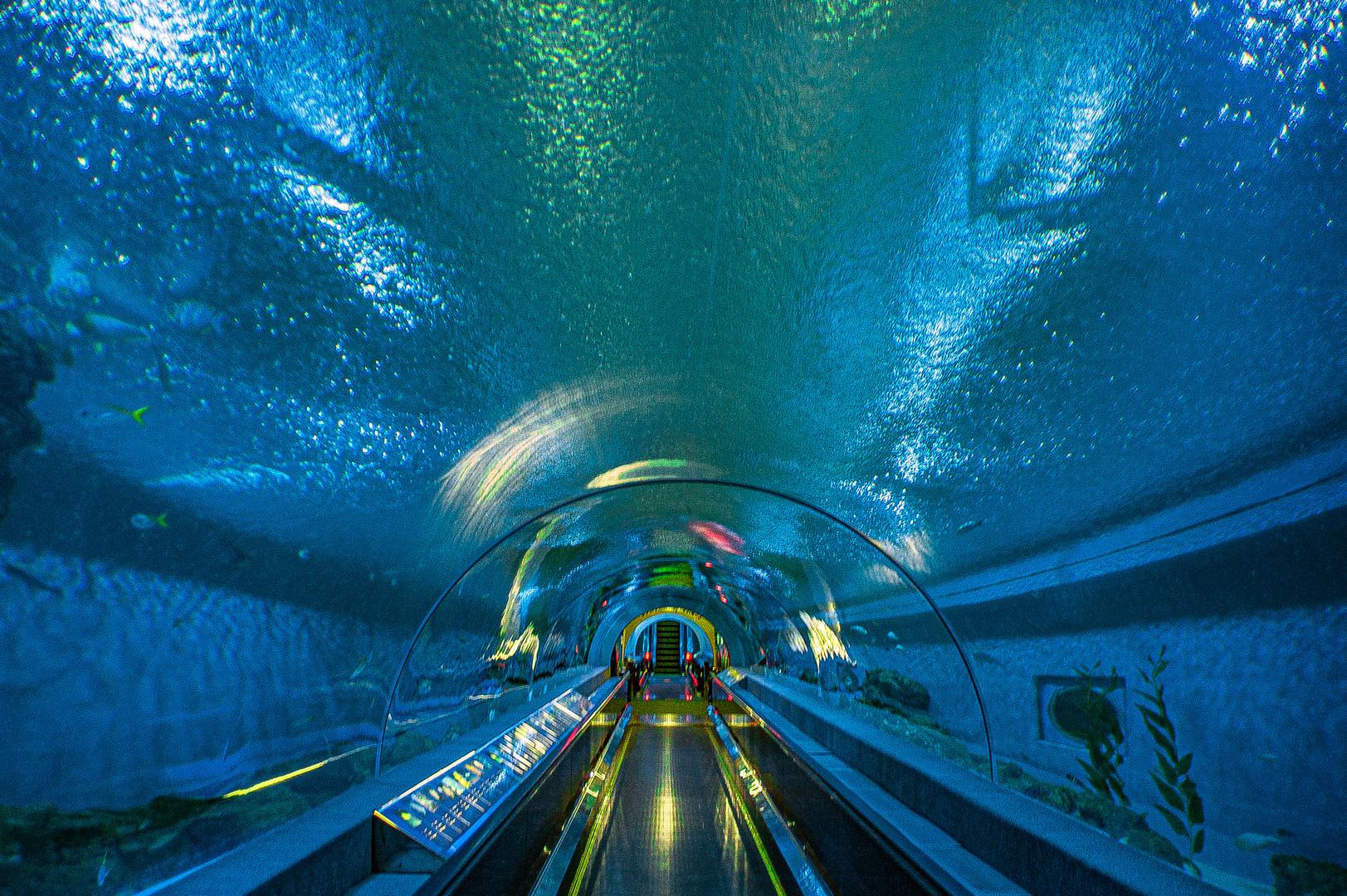 Bueng Chawak Chaloem Phrakiat Aquarium