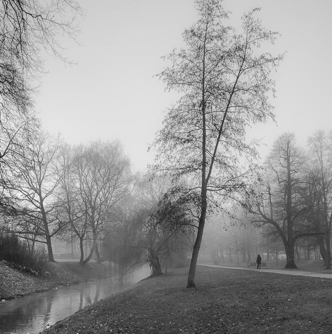 Bürgerpark im Nebel 2