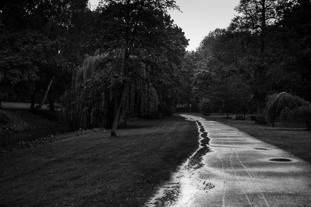Bürgerpark im Regen