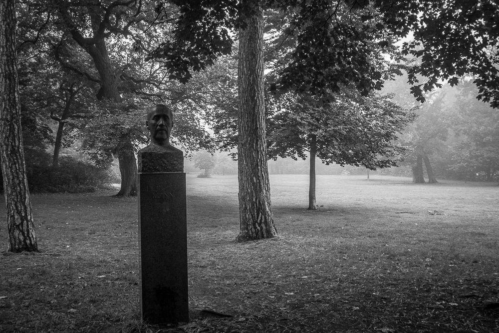 Bürgerpark V