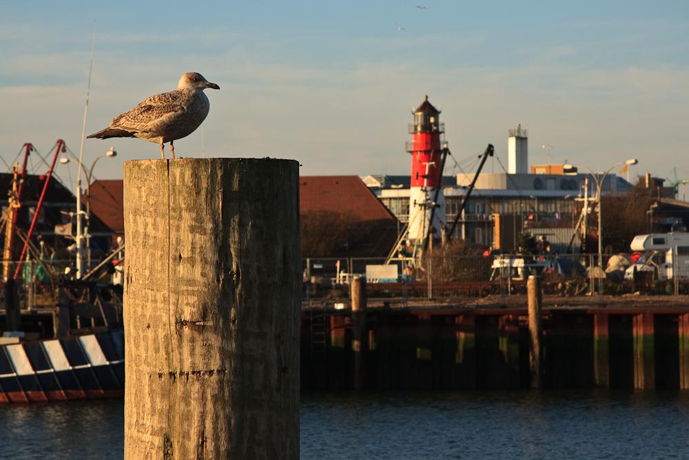 Büsumer Hafen mit Leuchtturm