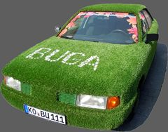BuGa Audi