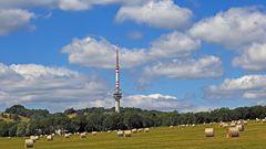 """Bukova hora, der 683 Meter hohen Zinkenstein ist von   Norden durch eine """"Hochebene""""..."""