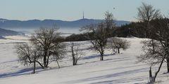 Bukova hora mit dem dominierenden Sendeturm das Elbtal (Labe) und eine Elster...