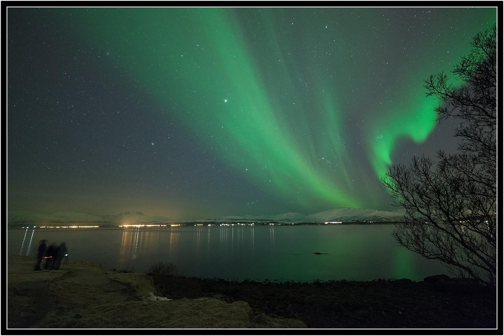 ~ Bukta: people chasing auroras ~