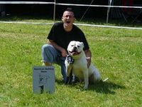 Bulldog75