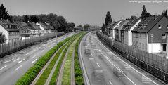 Bundesautobahnbegleitgrün