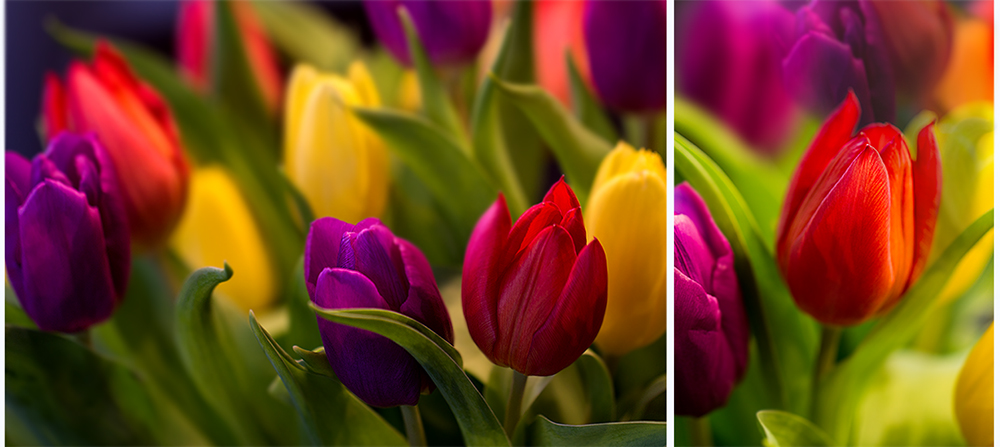 Bunt wie der Frühling ...