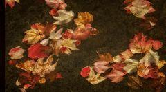Bunte Blätter im Wasser