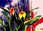 bunte Blumenwelt