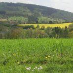 Bunte Frühlingslandschaft