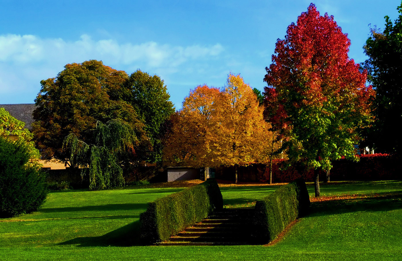 Bunte Herbstfarben ...