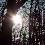 Bunte Sonnenstrahlen...