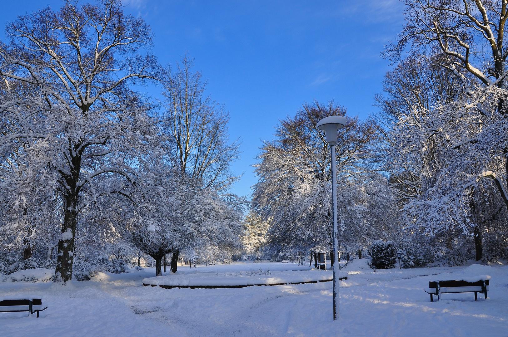 Bunter Garten Foto & Bild