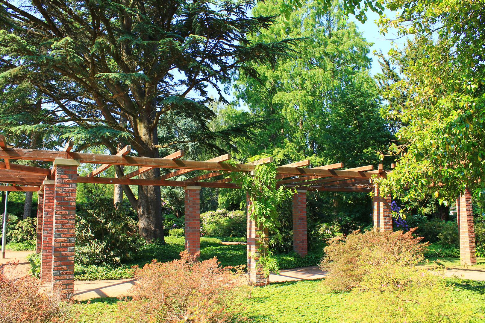 Bunter Garten Mönchengladbach Foto & Bild