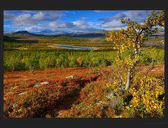 Bunter Nordischer Herbst