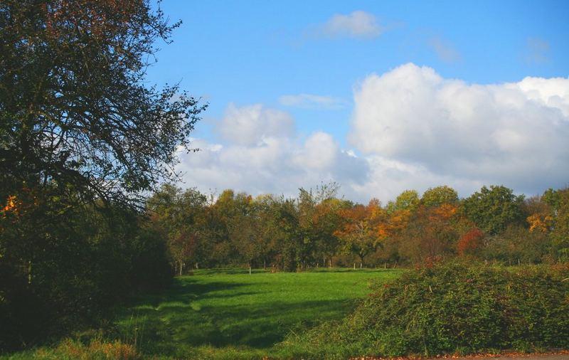 Buntes Herbstwetter