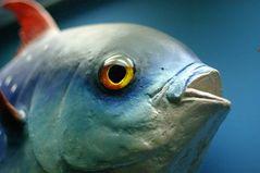 Buntfisch