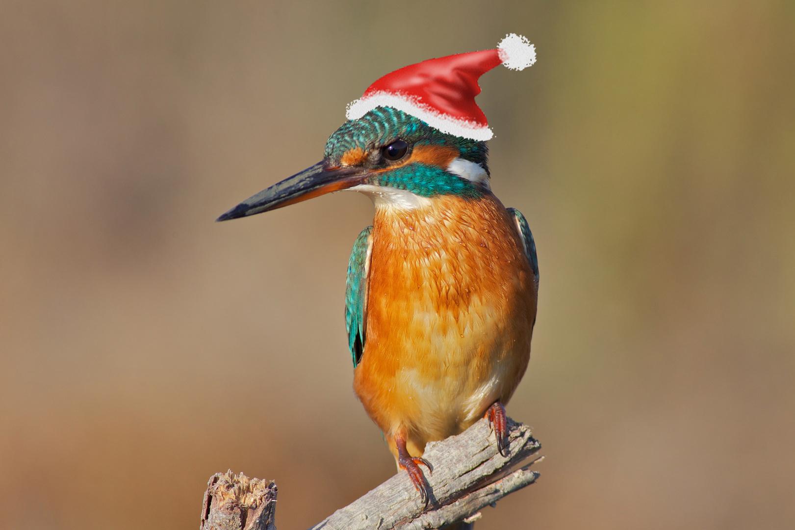 Buon Natale a tutti gli amici di Fotocommunity