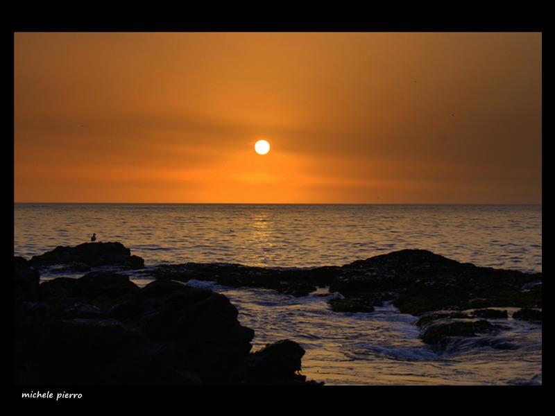 Buona notte foto immagini paesaggi mare natura foto for Foto di zig e sharko