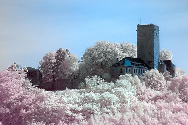 Burg Blankenstein (IR Channel Shift)