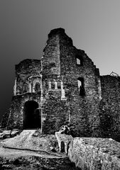 Burg Donaustauf 6