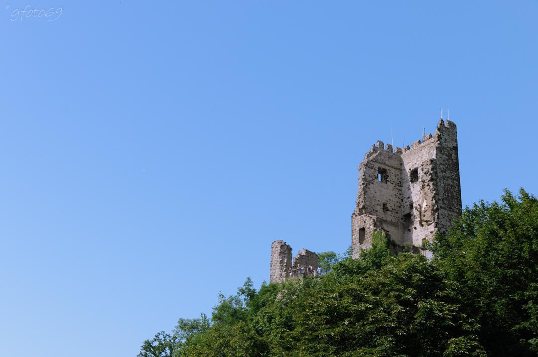 Burg Drachenfels (Siebengebirge)