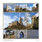 Burg Felsberg # 6