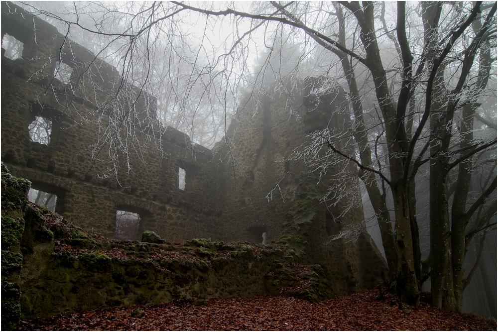 Burg Freudenkoppe...