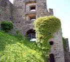 Burg Greifenstein bei Beilstein XI