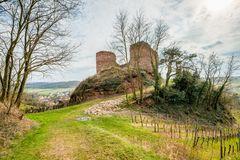 Burg Gutenburg 29