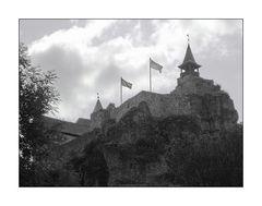 Burg Hohenstein (Mittelfranken)