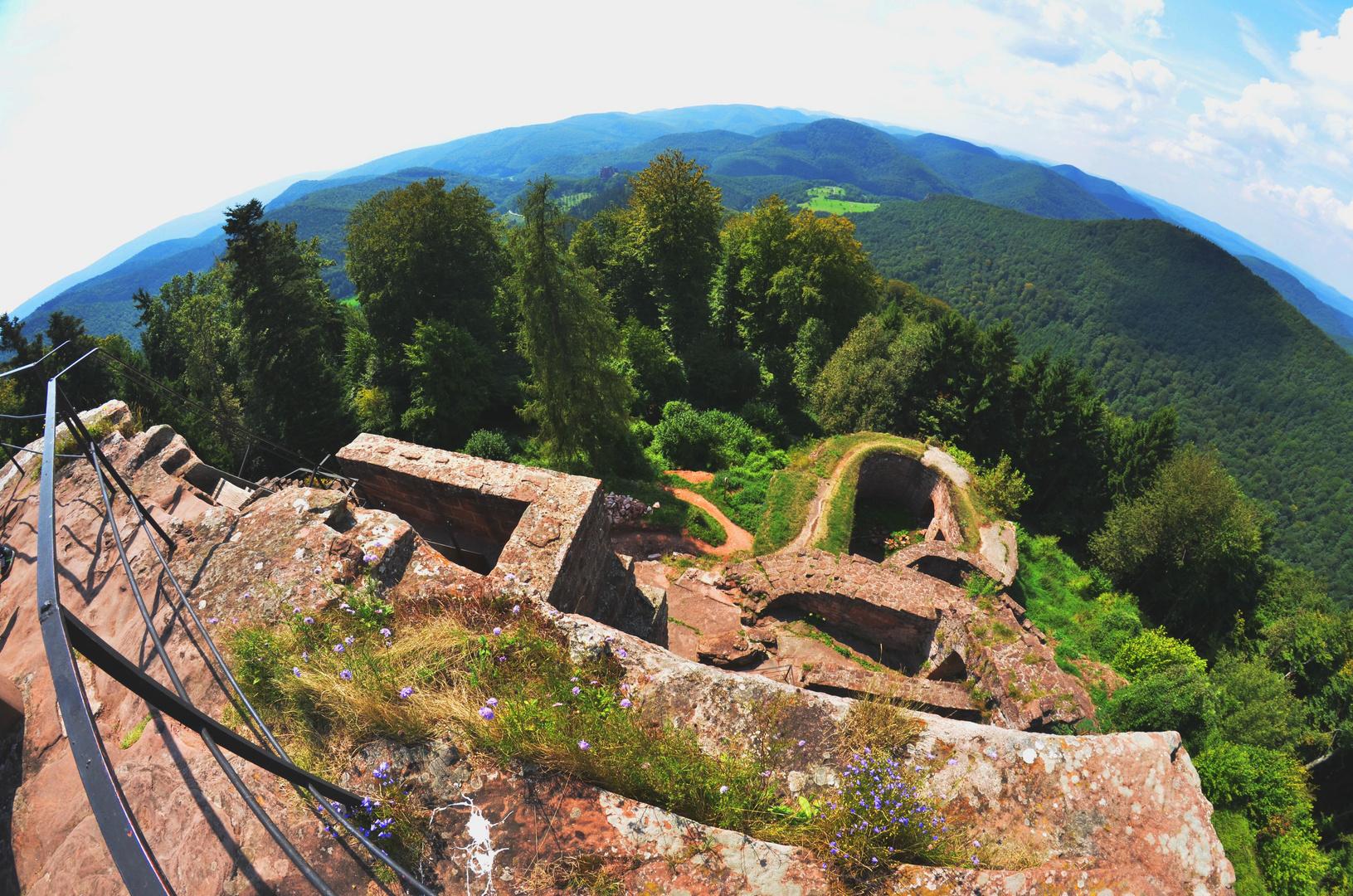 Burg in der Pfalz