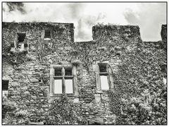 Burg Lichtenberg - fensterlos
