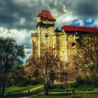 Burg Liechtenstein bei Mödling