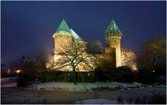 Burg Linn Variante X