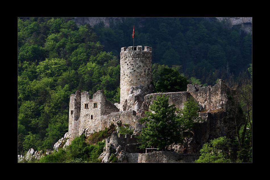 Burg Neu-Falkenstein...