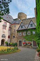 Burg Runkel in der Sommerblüte