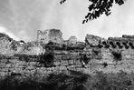Burg Schöneck