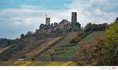 Burg Thurant an der Mosel im Herbst_01