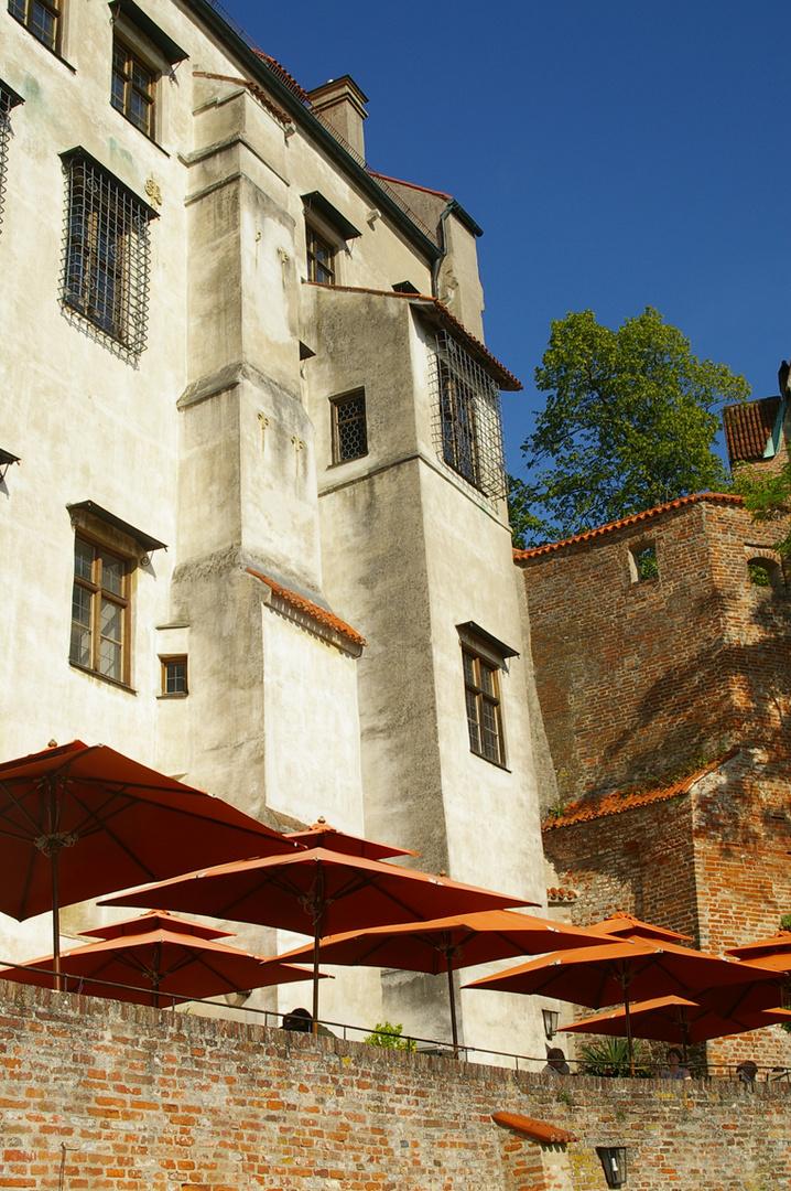 Burg Traunitz